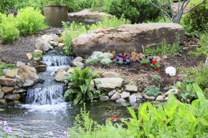 Flujo de agua del estanque