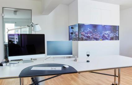 Interior de una oficina moderna con acuario