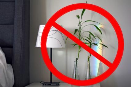 No hay bambú de la suerte en el dormitorio