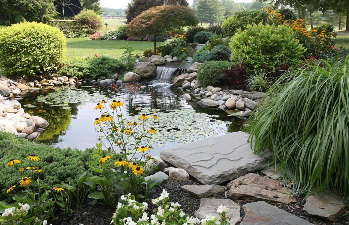Cascada de agua en el patio trasero