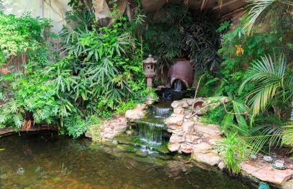 Pequeña cascada en un estanque decorativo