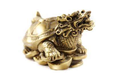 Tortuga del Dinero Cabeza de Dragón Dorado