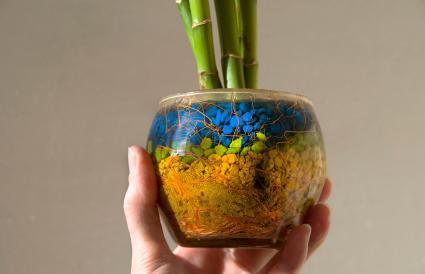 planta de bambú en una maceta de vidrio