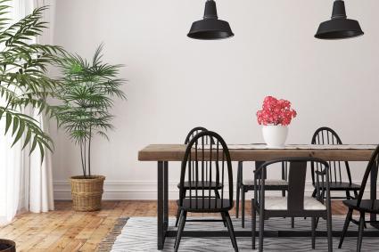Comedor con alfombra y plantas