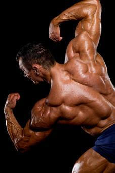 https://cf.ltkcdn.net/exercise/images/slide/123871-227x340-bodybuilder2.jpg