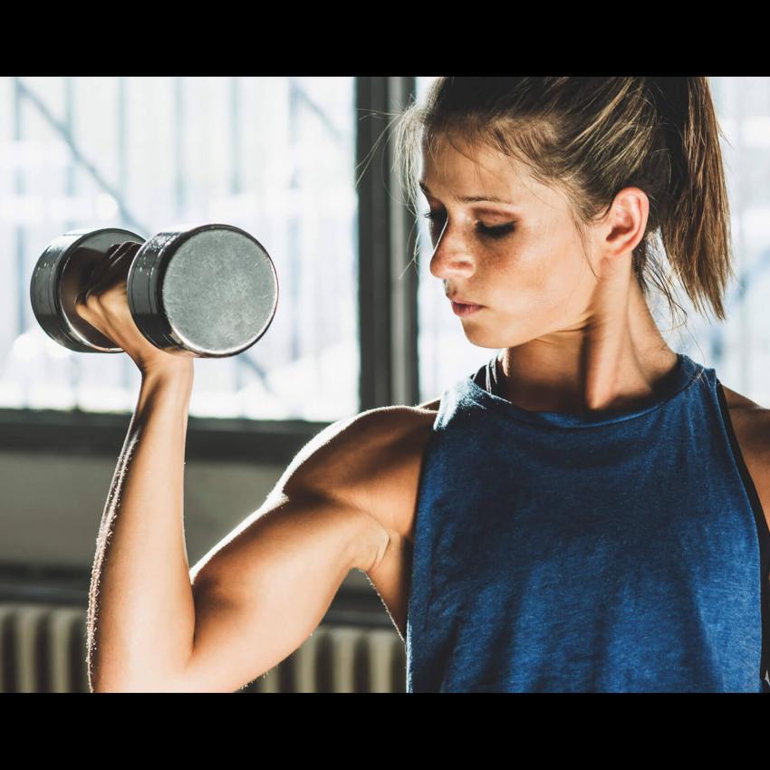 https://cf.ltkcdn.net/exercise/images/slide/246159-850x850-10-female-bicep-pictures.jpg