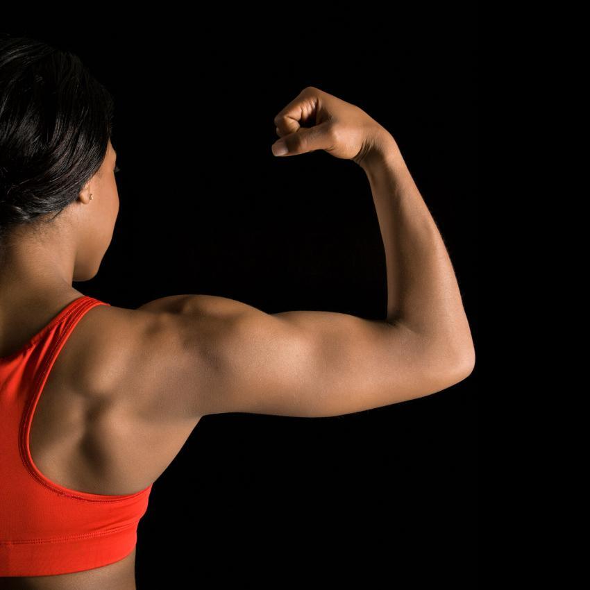 https://cf.ltkcdn.net/exercise/images/slide/246164-850x850-1-female-bicep-pictures.jpg