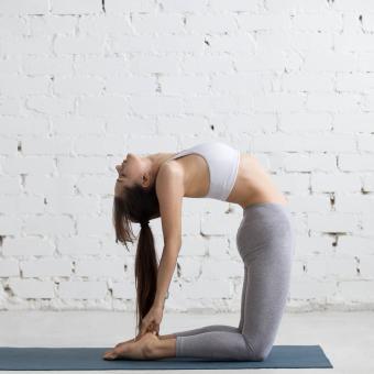 https://cf.ltkcdn.net/exercise/images/slide/248019-850x850-7-pictures-people-exercising.jpg