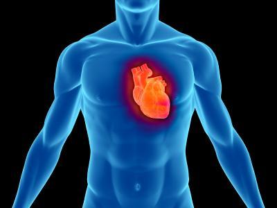 Heart_rate.jpg