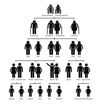 Family tree genealogy pictogram