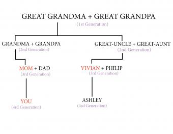 First cousins once removed chart