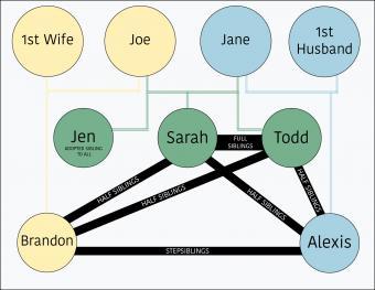 Sibling relationships chart
