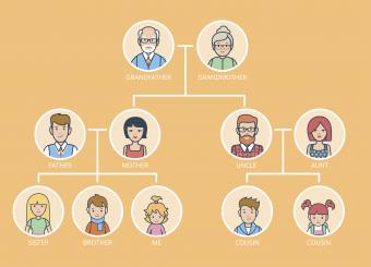 What Are First and Second Cousins?