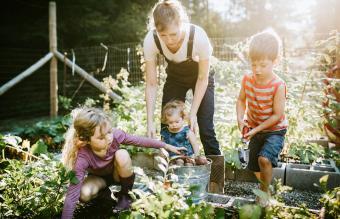 https://cf.ltkcdn.net/family/images/slide/263719-850x547-family-vegetable-garden.jpg