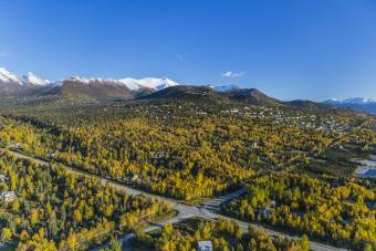 Aerial View Of The Hillside Neighbourhood Homes In Anchorage