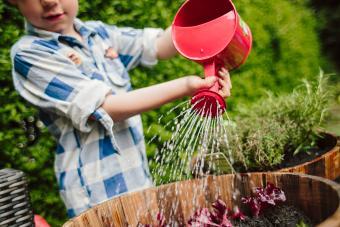 https://cf.ltkcdn.net/family/images/slide/272082-850x566-watering-can.jpg