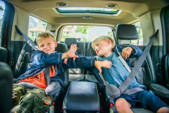 brothers fighting in car