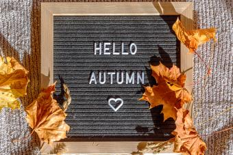 Black letter board with autumn text