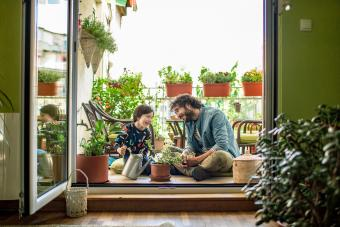 Father and son watering plants on their terrace