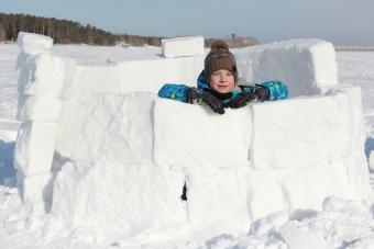 Boy Building Snow Fort