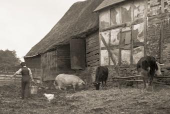 man doing chores on the farm 1920s