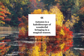 Autumn Pond and quote