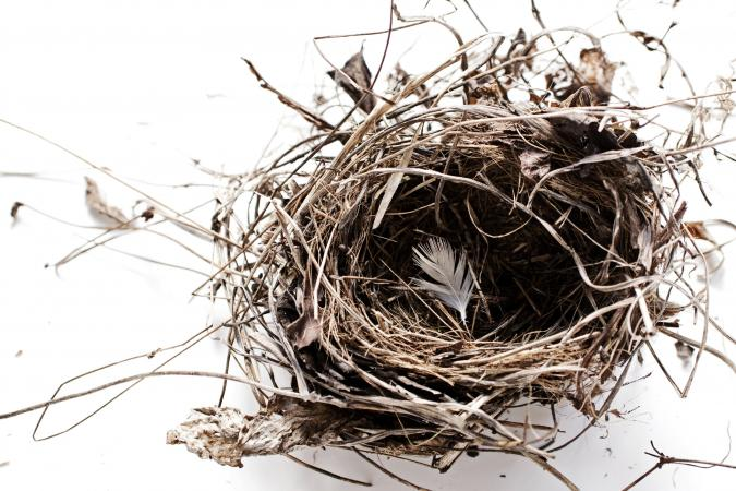 Single Parents and Empty Nest Syndrome | LoveToKnow