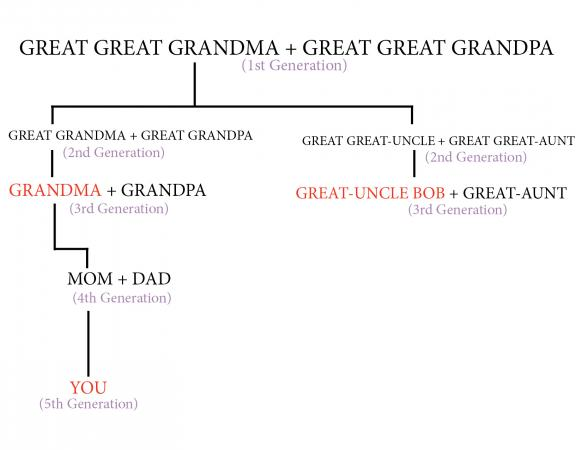 First cousin twice removed chart