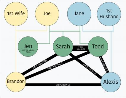Sibling relationships chart