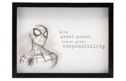 Spiderman Quote Framed Wall Art