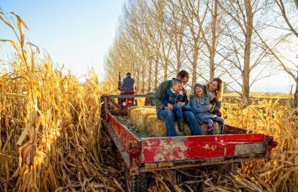 family hayride on thanksgiving