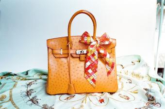 Hermès Ostrich Birkin Bag