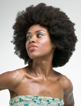 History Of The Afro Hairstyle Lovetoknow