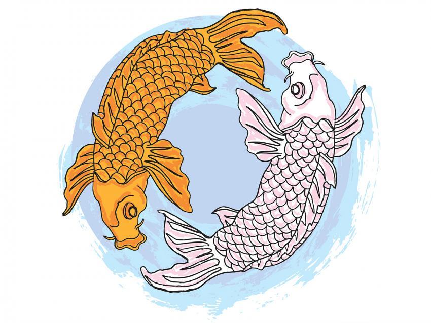 https://cf.ltkcdn.net/feng-shui/images/slide/248676-850x638-two-koi-fish-in-circle.jpg