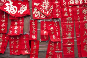 Variety of Chinese New Year Greeting Decorations