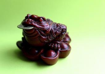 Feng Shui Tips for Displaying a Money Frog
