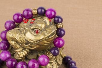 money frog with bracelet