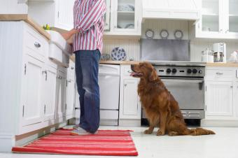 Red rug in kitchen