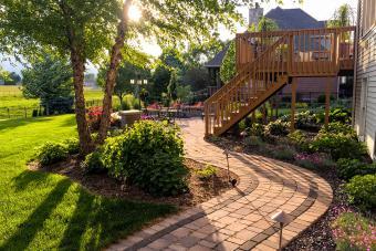 Winding brick path in backyard