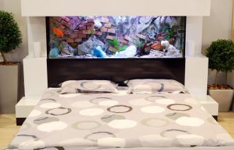 Bedroom with aquarium over bed