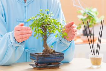 Reiki and feng shui combined