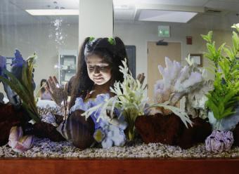 Aquarium in a waiting room