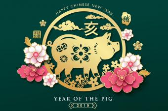 Feng Shui Year of the Pig