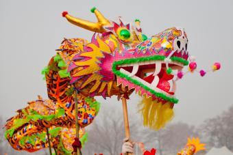 Chinese festival dragon
