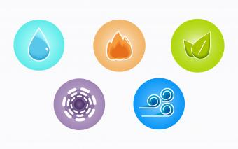 5 elements of polarity therapy