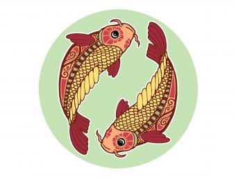 https://cf.ltkcdn.net/feng-shui/images/slide/248918-850x638-pair-swimming-koi-fish.jpg