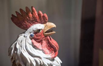 Feng Shui Rooster Symbols for Well-Being and Prosperity