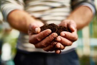 feng shui soil