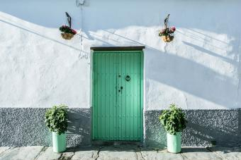 Green rustic door with potted plants in Seville