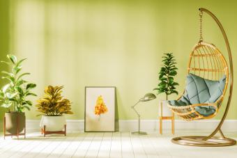 Living room with hanging egg chair and plants